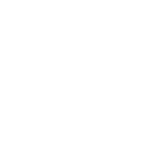 logo-google-adwords1
